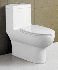 Dual Flush Toilet w/ Vacumm Flush
