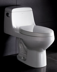 Single Flush Toilet w/ Vacuum Flush